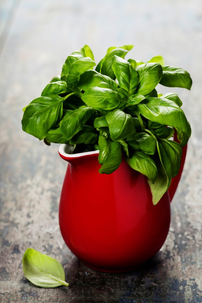 6 Kitchen Herbs and Spices That Heal